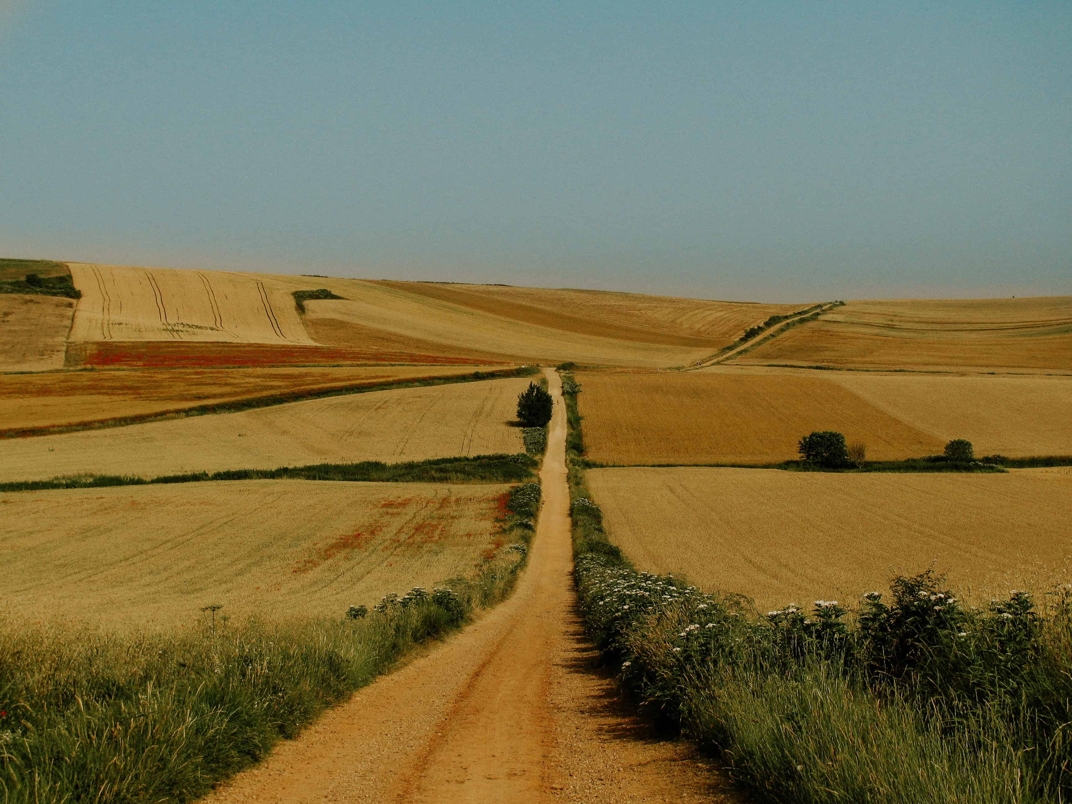 Adventure Elopement in Spain
