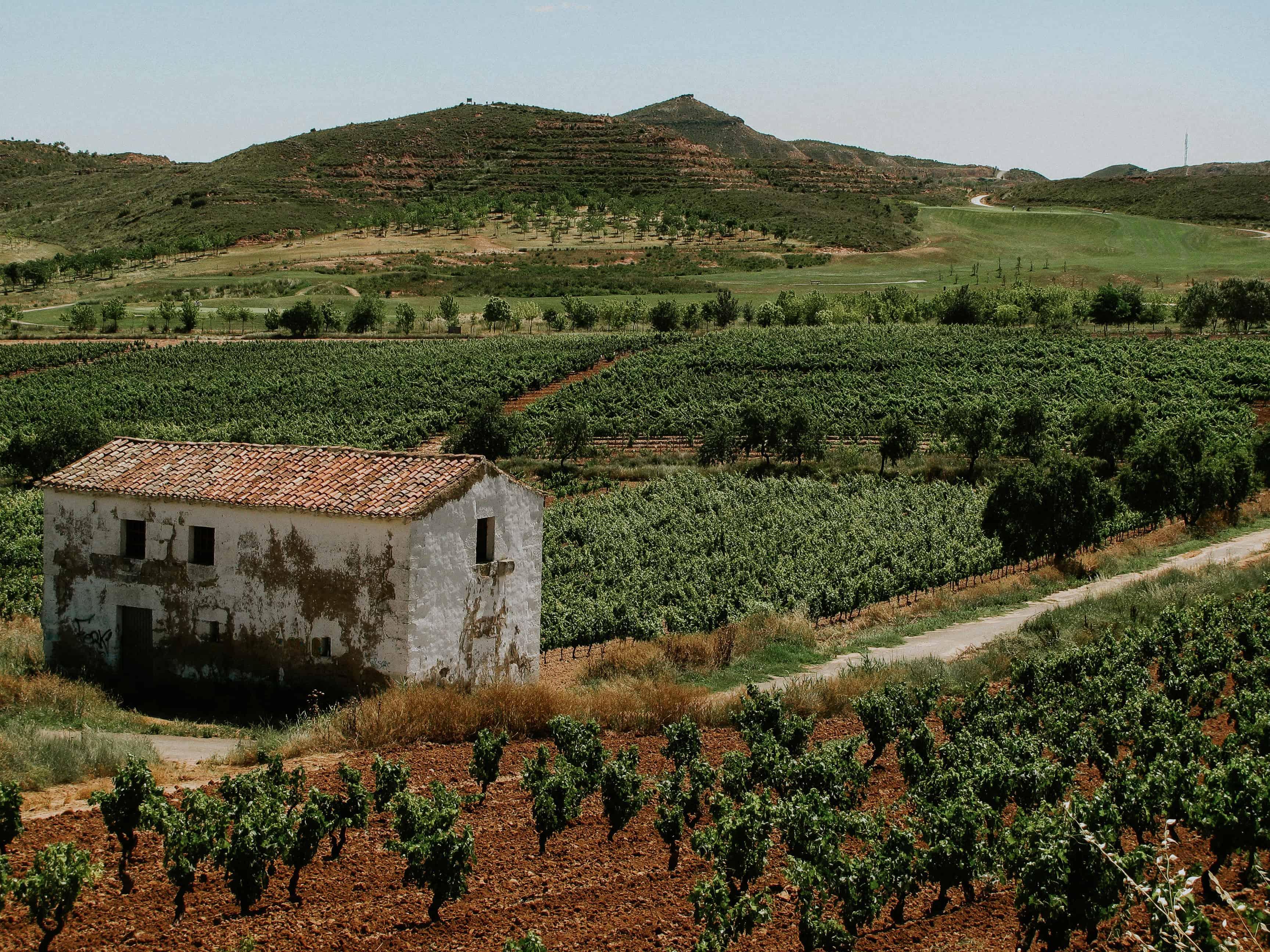 El Camino De Santiago Elopement
