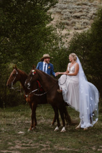 Wedding Horses in Steamboat Springs, Colorado